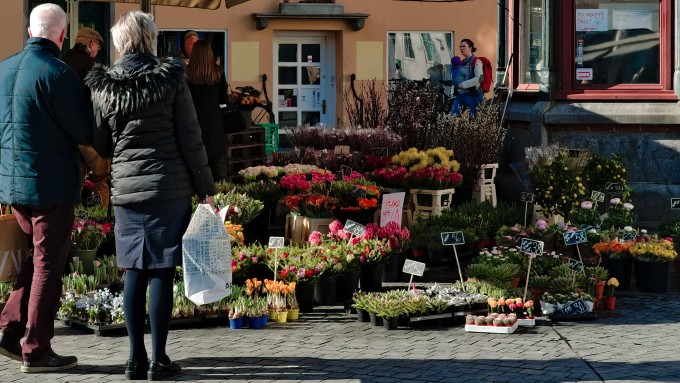 An older couple in front of a flower stall on a market in northern Europe. Picture: Peter Ivey Hansen/Unsplash